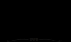 Salondumariageorientaletmixte